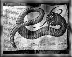 Mongolian-worm-FINAL