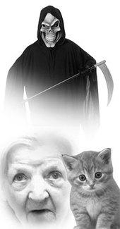 Deathcatfinal_2